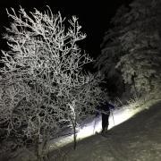 Promenade en foret avant d'atteindre le sommet avec Quentin